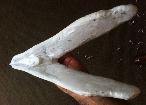 mandible foam inside