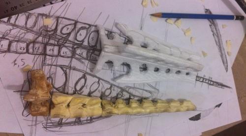 vertebra_sacral