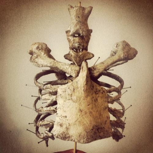 ventral body