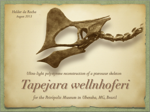 tapejara_presentation